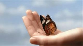 Песня-притча: Бабочка в руках - Андрей Гуров