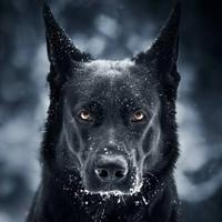 Фотография профиля Гены Пискуна ВКонтакте