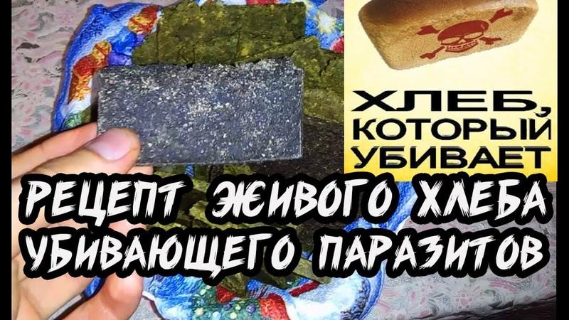 Рецепт сыроедческого хлеба убивающего паразитов Антипаразитарная чистка смотреть онлайн без регистрации