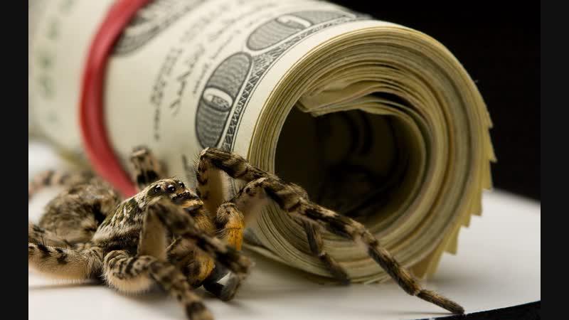 Kolotibablo Реальные деньги для не ленивых людей