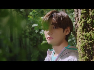 BTS(방탄소년단) 'PROJECT 7 : Back To Nature' - V ver.