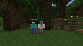 Стрим Minecraft  и общение с подписчиками.