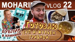 Moharinvlog 22.  Переезд. Моя кошка. Готовлю суп и жульен грибной.