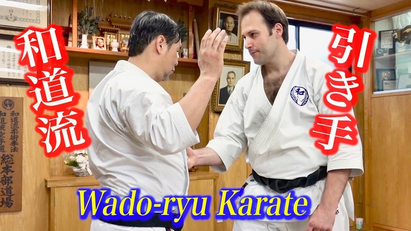 引き手が護身に使える?和道流空手の発想が凄い!Hikite to protect yourself in danger Wado ryu Karate with various