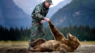 Лесник протянул руку помощи раненому медвежонку. Спустя год он отплатил тем же